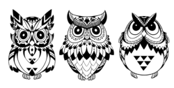 Owls Vector Art Free Vector Cdr