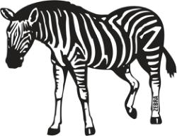 Zebra Free Vector Cdr