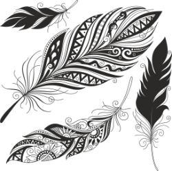 Feather Set Free Vector Cdr