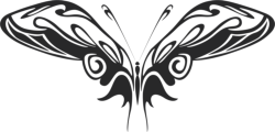 Butterfly Vector Art 015 Free Vector Cdr