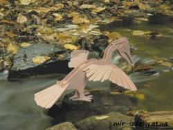 Pelicano Free Vector Cdr