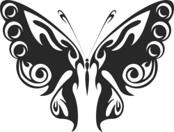 Butterfly Vector Art  047 Free Vector Cdr