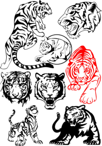 Big Tiger Vectors Pack Free Vector Cdr