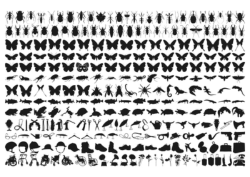 Insect Silhouette Vector Art Free Vector Cdr