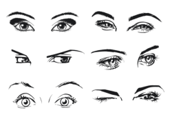 Female Eye Vector Art Free Vector Cdr