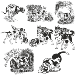 Dogs vector collection Free Vector Cdr