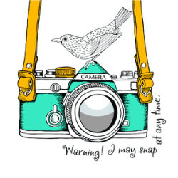Abstract Camera Bird Art Vector Free Vector Cdr
