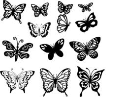 Butterfly Vector Art Set Free Vector Cdr