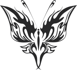 Butterfly Vector Art 021 Free Vector Cdr