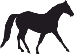 Horse Silhouette Vector Free Vector Cdr