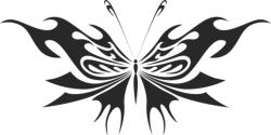 Butterfly Vector Art 014 Free Vector Cdr