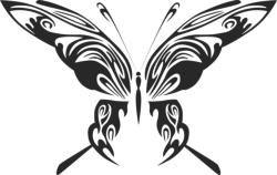 Butterfly Vector Art 048 Free Vector Cdr