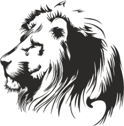 Lion Stencil Free Vector Cdr