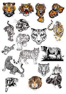 Tiger Vinyl Wall Stickers vectors Free Vector Cdr