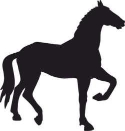 Decal Horse Walks Silhouette Vector Free Vector Cdr