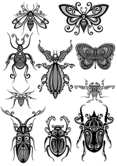 Ornament Insect Art Vector Pack Free Vector Cdr