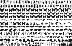 Free Butterfly Silhouette Vector Pack Free Vector Cdr