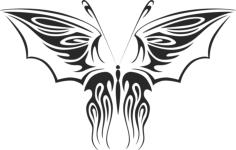 Butterfly Vector Art 012 Free Vector Cdr