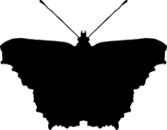 Silhouette clipart butterfly Free Vector Cdr