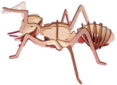 Laser cut Insect Ant Free Vector Cdr
