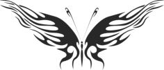 Butterfly Vector Free Vector Cdr