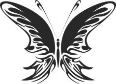 Butterfly Vector Art 022 Free Vector Cdr