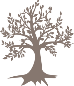 Tree Free Vector Cdr