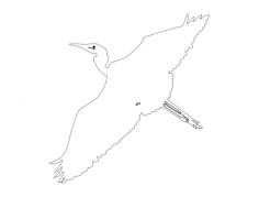 egret-flyby-outline-ba Free Dxf for CNC