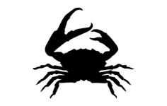 crab silhouette Free Dxf for CNC