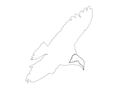 eagle 1dx Free Dxf for CNC