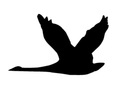 geese Free Dxf for CNC