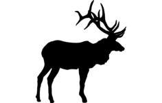 large bull elk Free Dxf for CNC