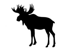 elk (1) Free Dxf for CNC