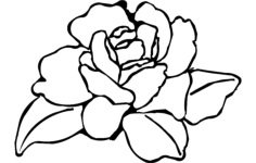 flower rose Free Dxf for CNC