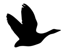 geese silhouette Free Dxf for CNC