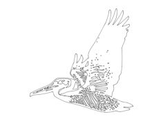 flying pelican Free Dxf for CNC