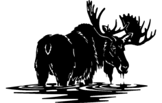 moose 2 Free Dxf for CNC