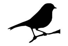 7×6 bird on branch Free Dxf for CNC