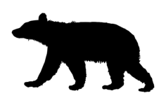 animal bear Free Dxf for CNC