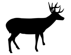 deer Free Dxf for CNC