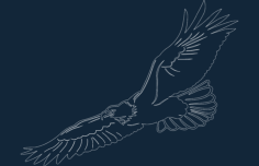eagle2 -1.Free Dxf for CNC