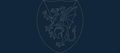 dragon sheild Free Dxf for CNC