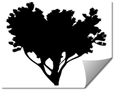 tree 8 Free Dxf for CNC