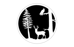 deer tree 00 1 Free Gcode .TAP File for CNC