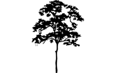 tree silhouette Free Dxf File for CNC