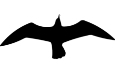 seagul silhouette Free Dxf File for CNC