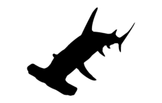 hammer head shark silhouette Free Dxf File for CNC