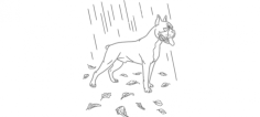 boxer in the rain Free Dxf File for CNC