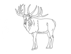 elk Free Dxf File for CNC