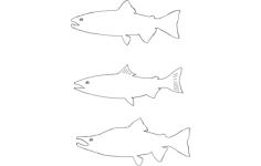 kokanee salmon Free Dxf File for CNC